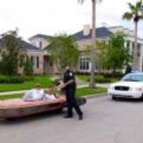 Radnom funny picture tags: star-wars speeder pulled-over police speeding