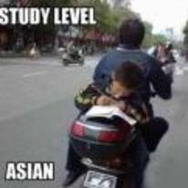 Radnom funny picture tags: study level asian reading back-of-bike