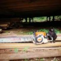 Radnom funny picture tags: tiny monkey giant chainsaw wood