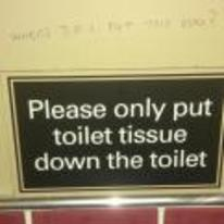 Radnom funny picture tags: toilet-humour where-do-I-put-the-poo graffiti sign please-only-put-toilet-tissue-down-the-toilet