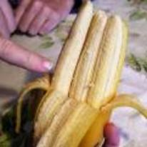 Radnom funny picture tags: tripple mutant banana three 3