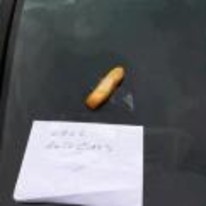 Radnom funny picture tags: window-chip call autoglass chipped car-windscreen